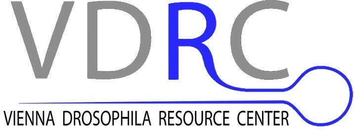 Logo Vienna Drosophila Rnai Center